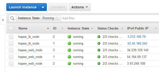When both load balancers are up, each owns its EIP